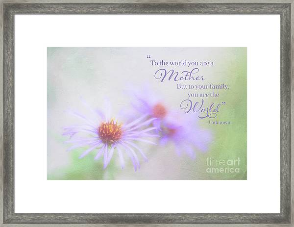 Asters For Mother's Day Framed Print