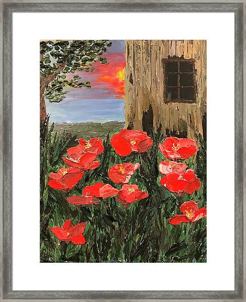 At Sunset By The Old Barn Framed Print