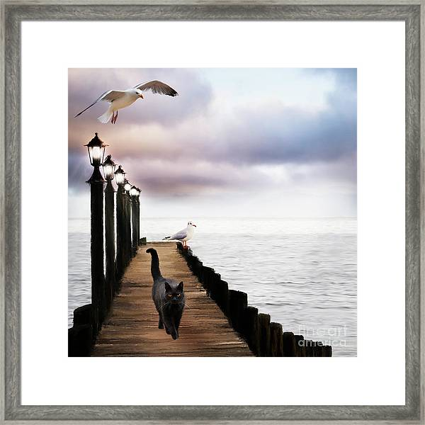 At The Jetty Framed Print