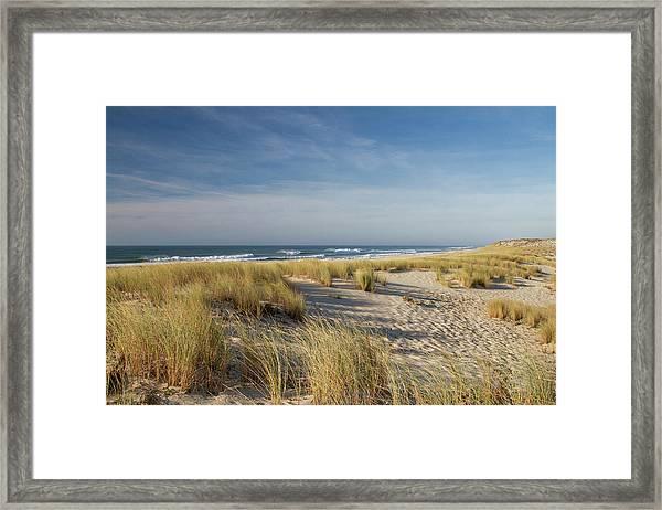 Atlantic Coast And Cap Ferret Framed Print