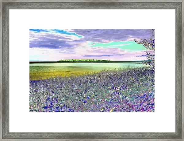 Au Train Island Greened Over Framed Print