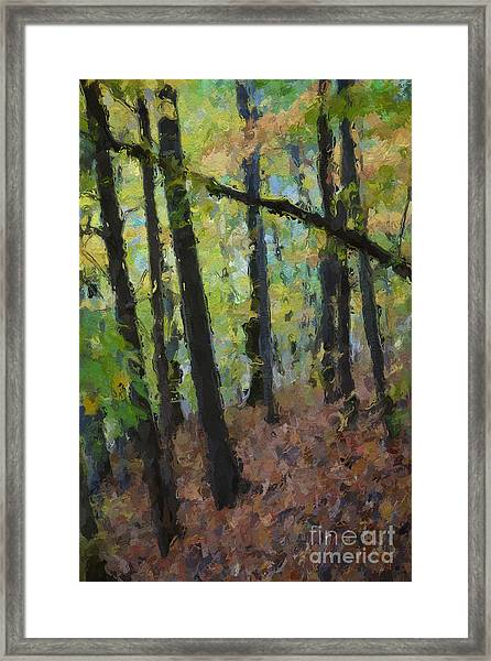 Autumn Afternoon Framed Print by David Boudreau