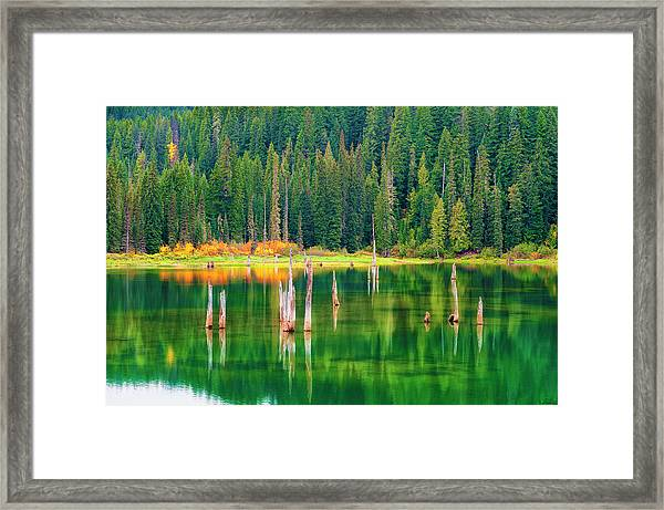 Framed Print featuring the photograph Autumn At Goose Lake Gifford Pinchot National Forest by Dee Browning