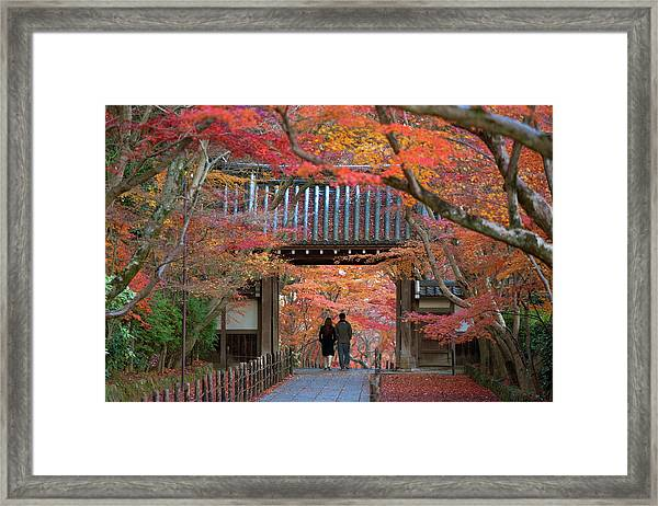 Autumn At Komyoji Temple In Kyoto, Japan Framed Print