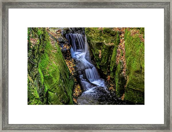 Autumn At Pewits Nest Framed Print