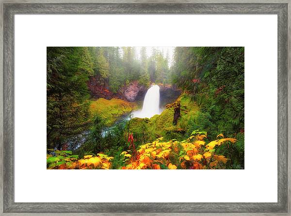 Framed Print featuring the photograph Autumn At Sahalie Falls by Dee Browning