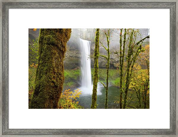 Framed Print featuring the photograph Autumn At Silver Falls State Park by Nicole Young