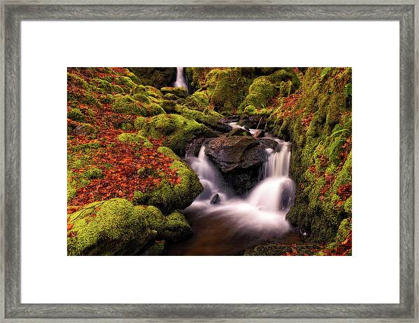 Framed Print featuring the photograph Autumn Falls by Elliott Coleman