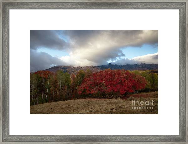 Autumn Foothills Framed Print