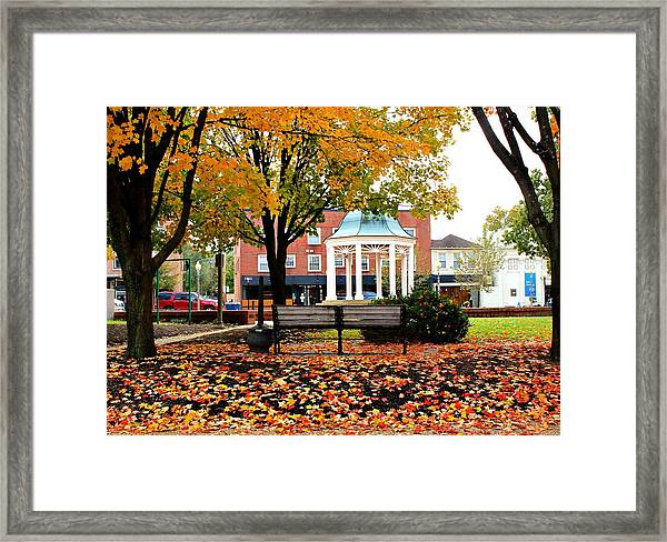 Framed Print featuring the photograph Autumn Gatherings  by Candice Trimble