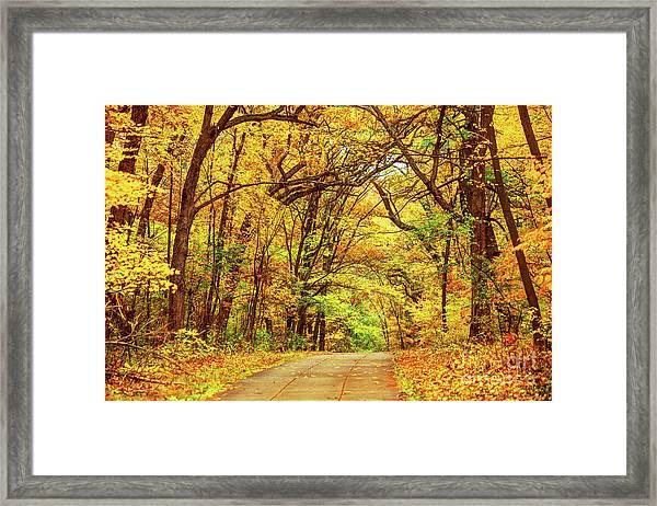 Autumn In Boston's Franklin Park Framed Print