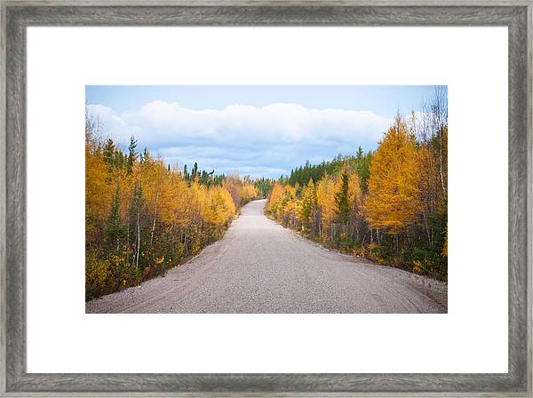Autumn In Ontario Framed Print