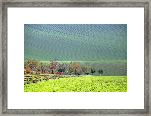 Autumn In South Moravia 18 Framed Print