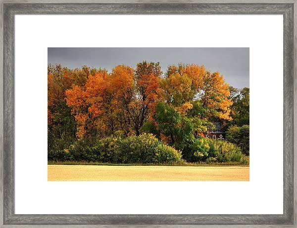 Autumn Is Nigh  Framed Print