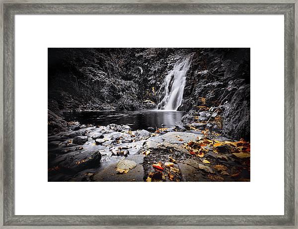 Autumn Leaves At Glenoe Framed Print
