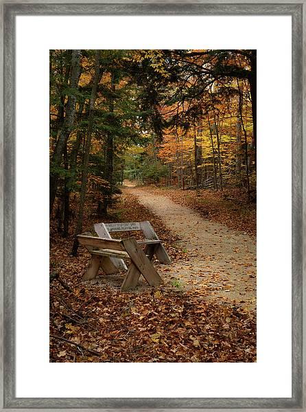 Autumn Meetup Framed Print