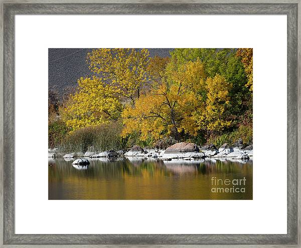 Autumn On The Snake River Framed Print