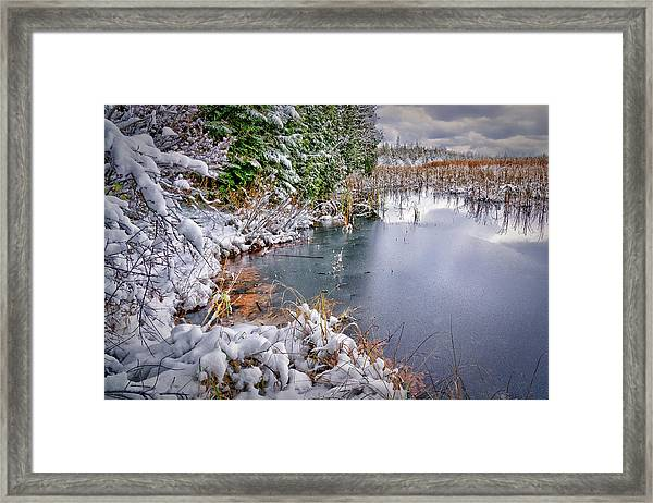 Autumn To Winter Framed Print