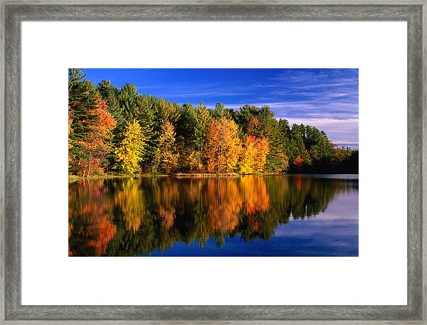 Autumn Trees In New Hampshire,new Framed Print