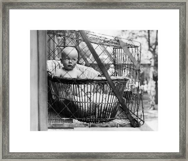 Baby Cage Framed Print