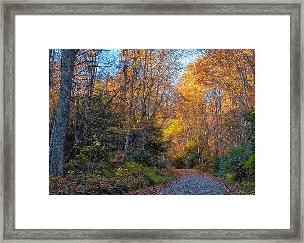 Back Road Beauty Framed Print