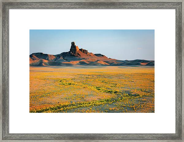 Badlands Superbloom Framed Print
