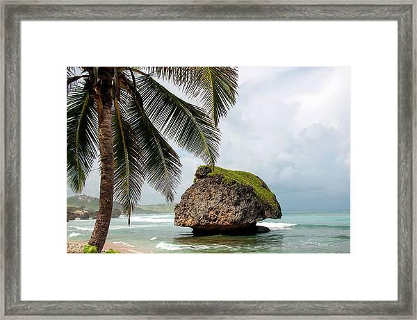 Barbados Bathsheba Beach Rock Framed Print