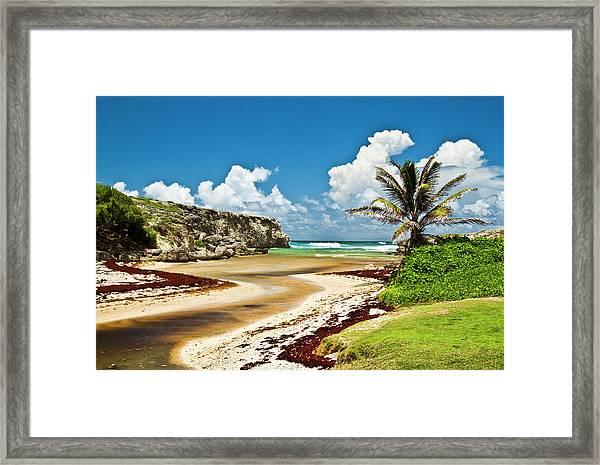 Barbados Coastline Framed Print