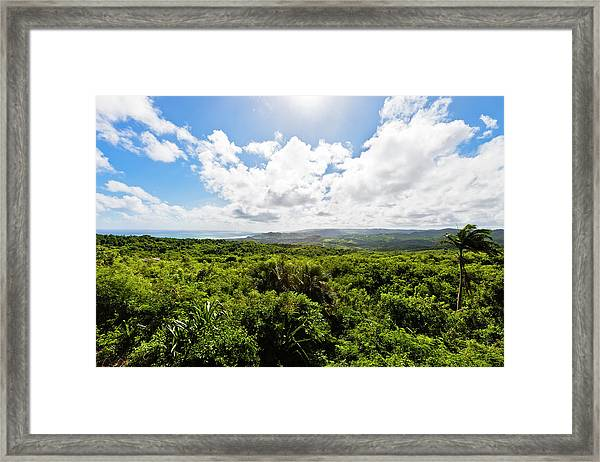 Barbados Hinterland Framed Print by Flavio Vallenari