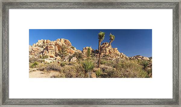 Joshua Tree Np - Barker Dam Nature Trail Framed Print