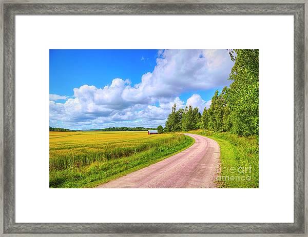 Barley Fields Framed Print