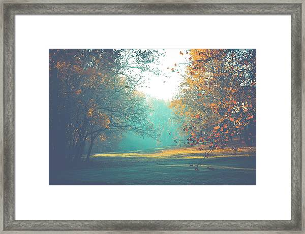 Bashful Framed Print