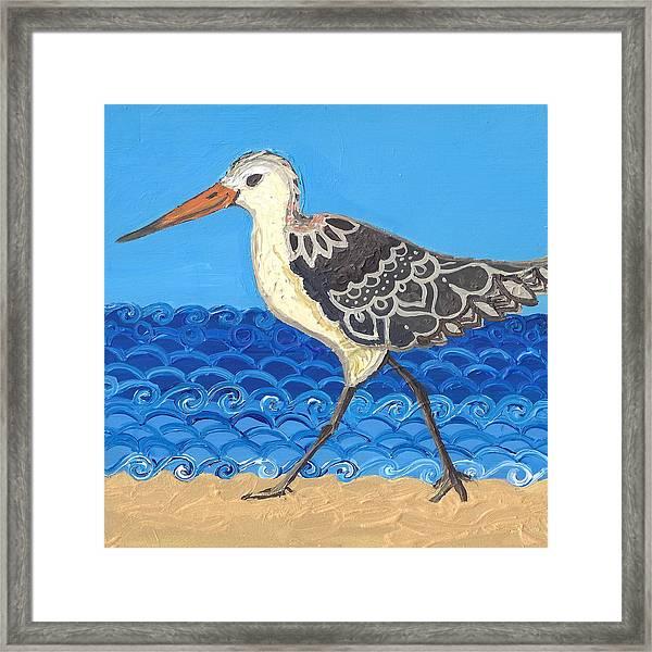 Beach Bird 2 Framed Print