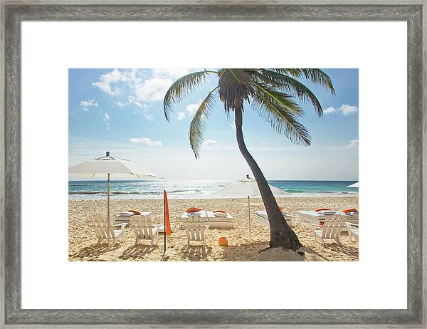 Beach Chairs And Umbrella With Palm Framed Print