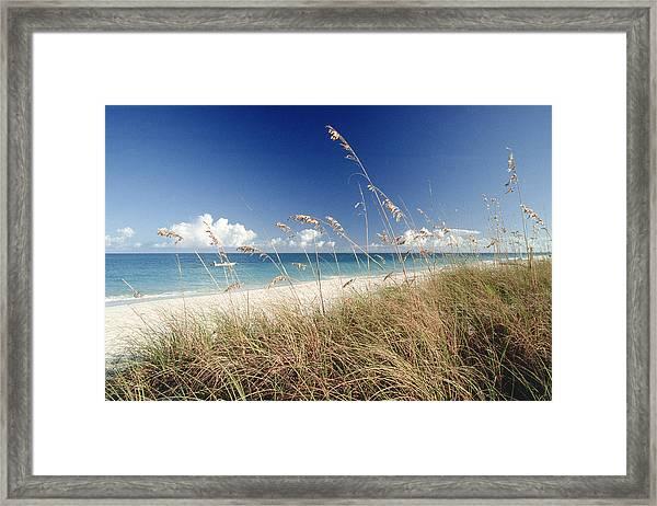 Beach W Grass And Boat, Palm Beach, Fl Framed Print