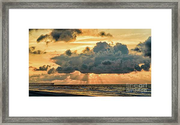 Beaming Through Framed Print
