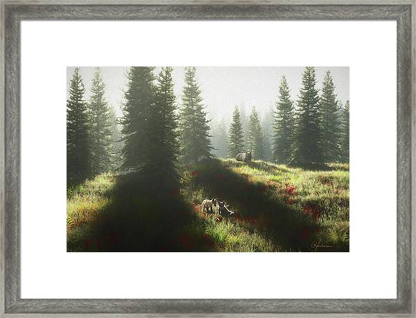 Bear And Foxes Framed Print