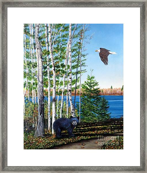 Little Bear And Eagle Wing Framed Print
