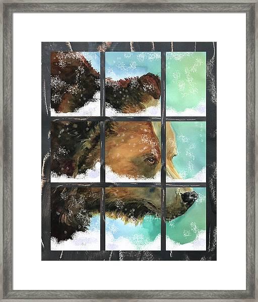 Bear Outside My Window Framed Print