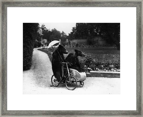 Bear Ride Framed Print