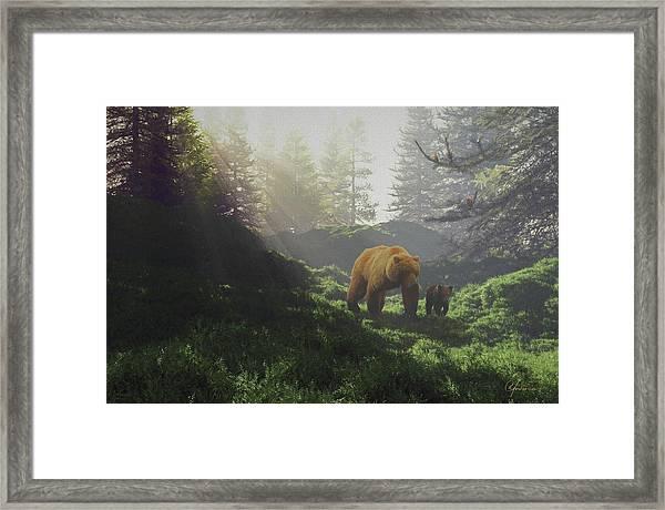 Bear Wwith Cub Framed Print