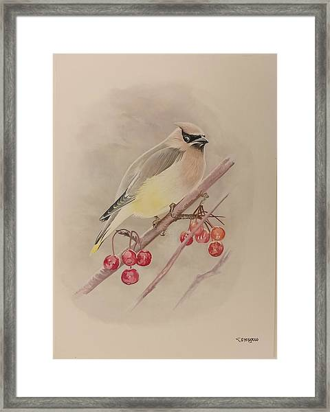 Framed Print featuring the painting Beautiful Bird by Said Marie