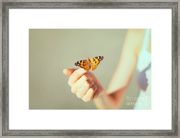 Beautiful Butterfly Sitting On The Girl Framed Print