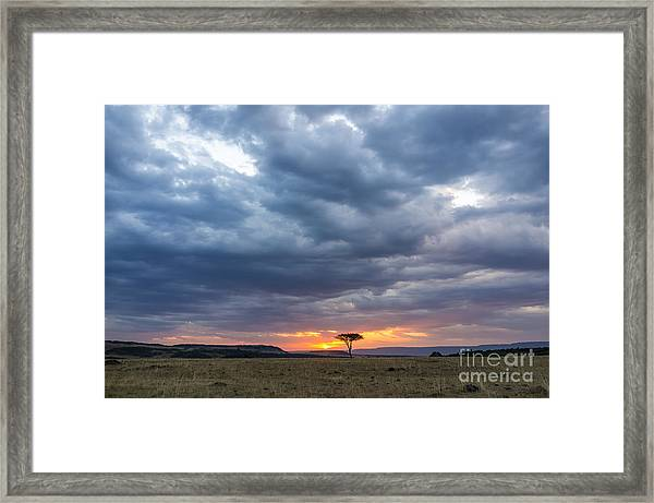 Beautiful Sunset In The Savannah Of Framed Print
