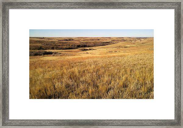Beauty On The High Plains Framed Print