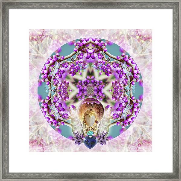 Callicarpa Framed Print