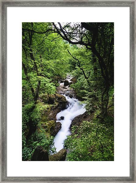 Framed Print featuring the photograph Bela River, Balkan Mountain by Milan Ljubisavljevic