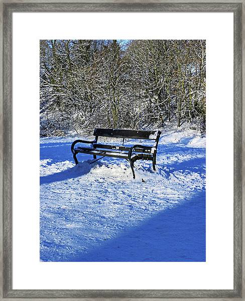 Bench In The Snow Framed Print