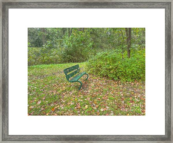 Bench Overlooking Pine Quarry Framed Print