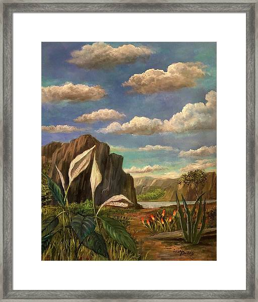 Beneath The Clouds Of Africa Framed Print